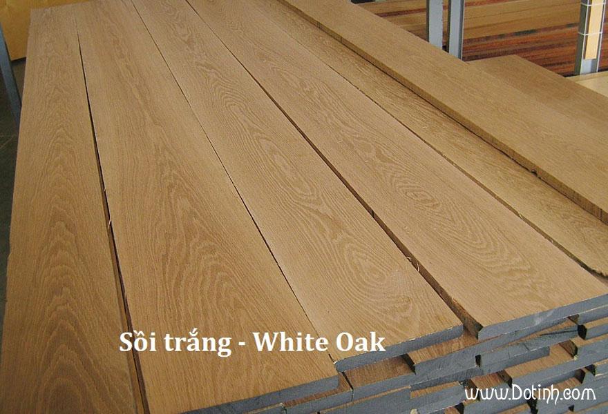 Đặc điểm của gỗ sồi trắng