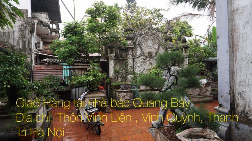 Khoảng sân vườn tràn ngập sắc xanh (Ảnh: Dotinh.com)