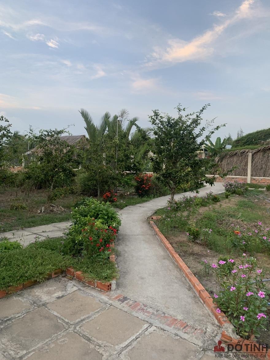Con đường dẫn vào nhà tuy bé nhỏ nhưng lại phủ sắc 1 màu xanh mướt - Ảnh: Dotinh.com